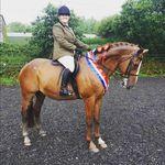 Samantha McDermott - @just.two.orange.horses - Instagram