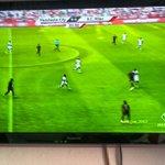 Sonja McGregor - @helpfulcatfootball - Instagram