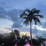 Susie Hedrick - @hedrick.susie - Instagram