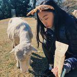 Aeres Tiana Tham - @thammerrr - Instagram