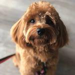 Winnie - @winnie_pate - Instagram